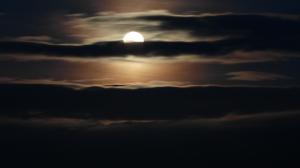 Blood Moon rising.