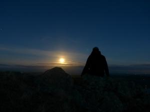Moon watching.