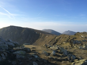 The ridge back.